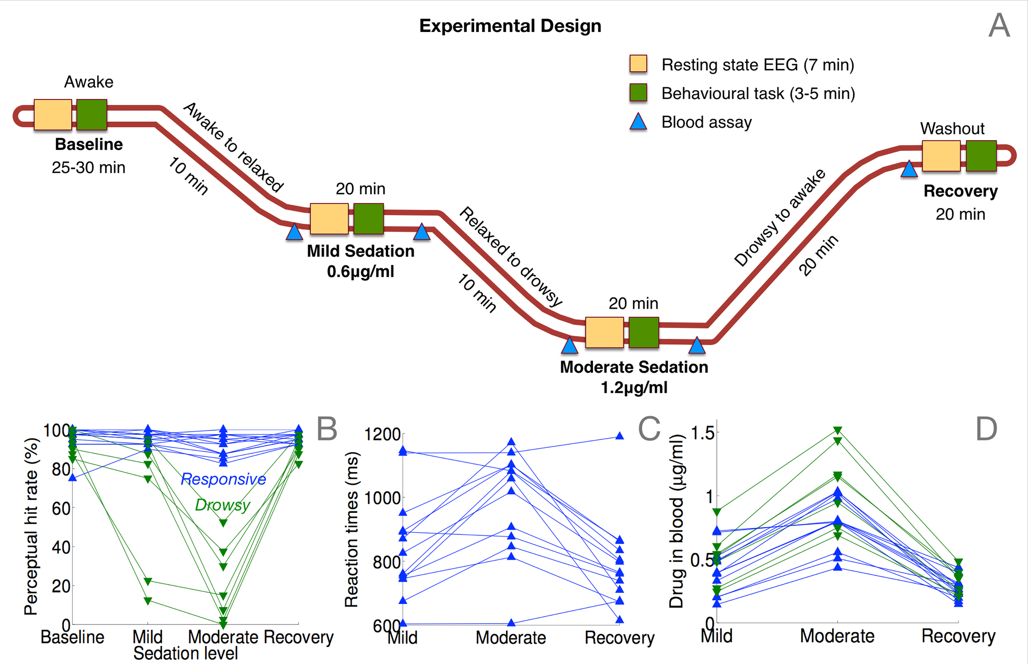 Details on the resting-state EEG dataset recorded with