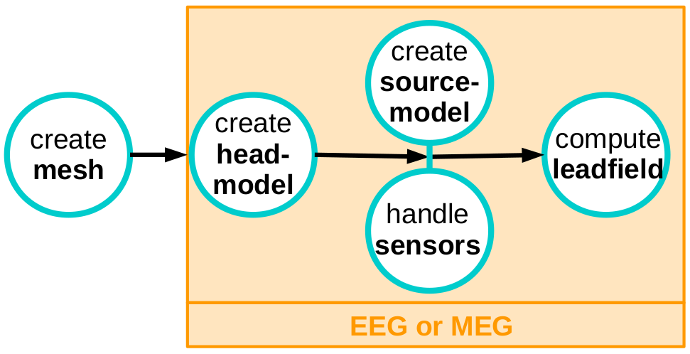 Solving the EEG and MEG forward problem using the finite